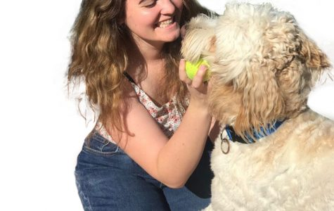 Emotional Support Dogs should be an available resource for students