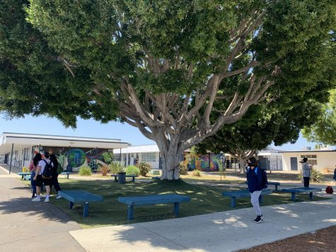 Bonita Vista High students mingle in the quad after the fifth period bell rings, singling the end of class. Only a limited number of students are on campus for classes.
